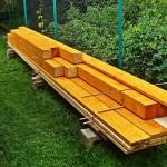Szkodniki drewna. Jak usunąć je z drewna konstrukcyjnego?